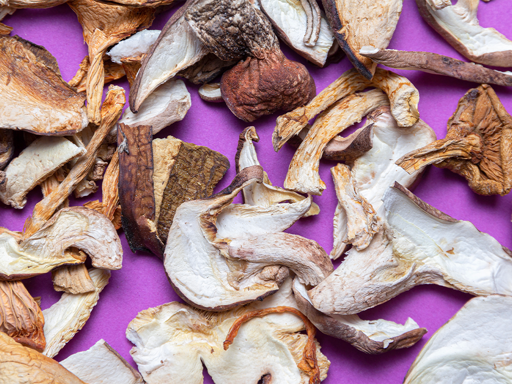 The Benefits of Mushrooms in Beauty and Wellness, Explained featured image